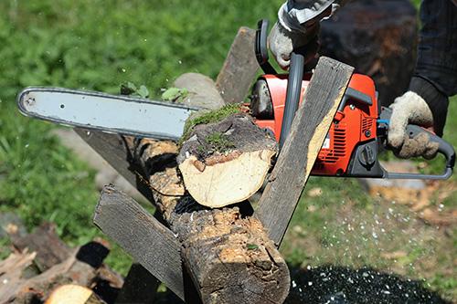 Avis de travaux élagage et battage arbres